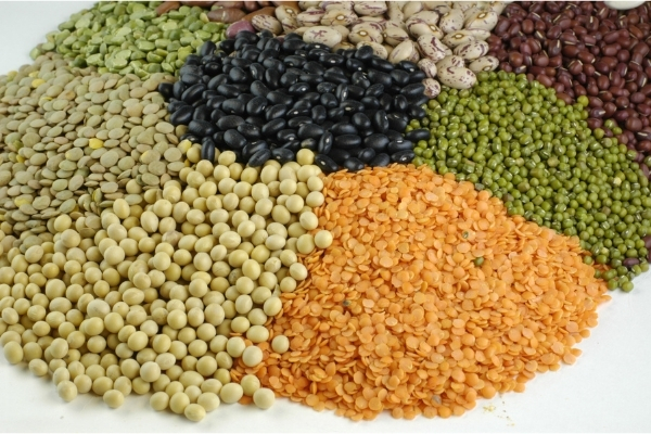 Lentils (Dal) And Pulses